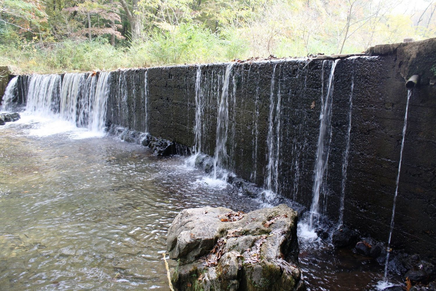 Preparations Begin for Turkey Creek Dam Removal